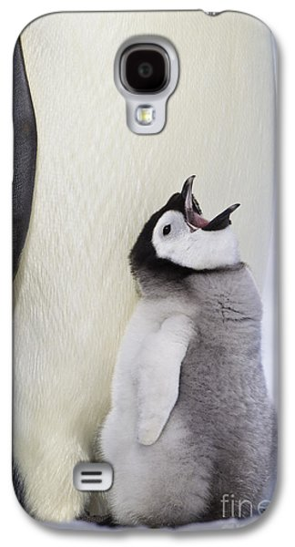 Emperor Penguin And Hungry Chick Galaxy S4 Case by Jean-Louis Klein & Marie-Luce Hubert