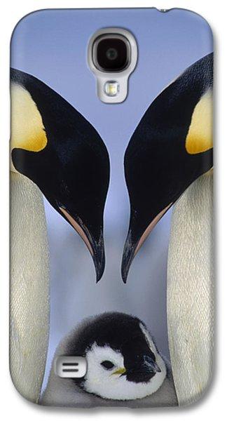 Emperor Penguin Family Galaxy S4 Case by Tui De Roy