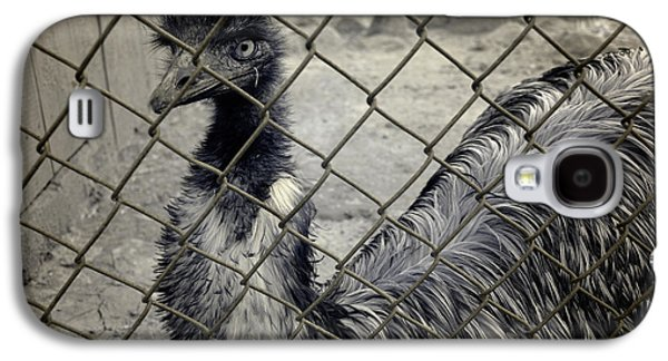Emu At The Zoo Galaxy S4 Case