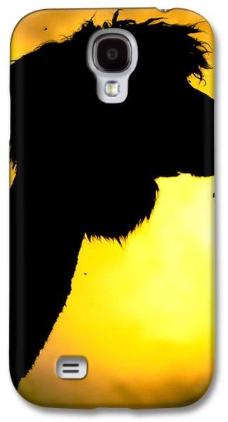 Endless Alpaca Galaxy S4 Case by TC Morgan