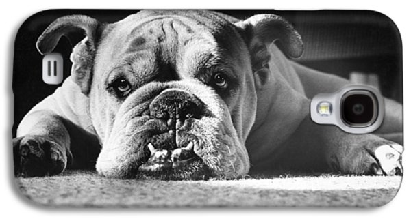 English Galaxy S4 Cases - English Bulldog Galaxy S4 Case by M E Browning and Photo Researchers
