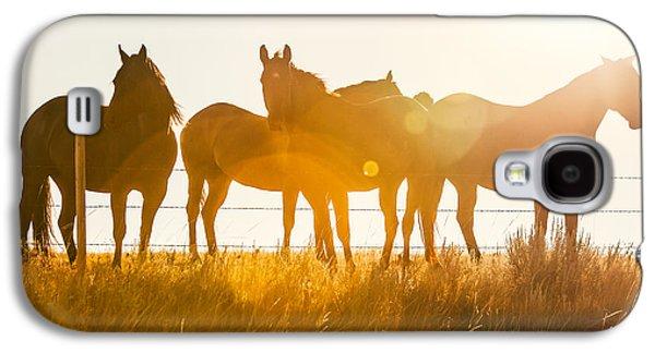 Horse Galaxy S4 Case - Equine Glow by Todd Klassy
