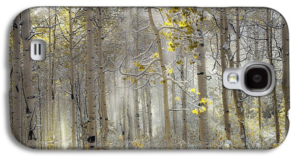 Ethereal Autumn Galaxy S4 Case by Leland D Howard