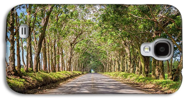 Eucalyptus Tree Tunnel - Kauai Hawaii Galaxy S4 Case by Brian Harig
