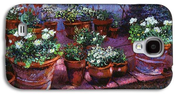 Evening Garden Patio Galaxy S4 Case by David Lloyd Glover