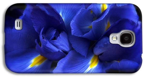 Evening Iris Galaxy S4 Case