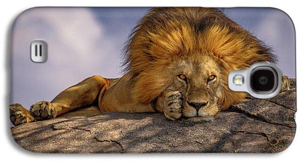 Eye Contact On The Serengeti Galaxy S4 Case