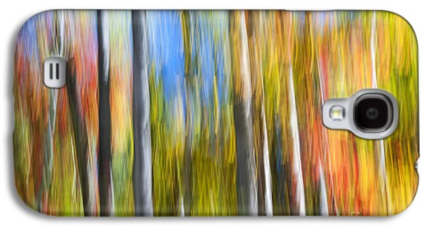 Fall Colors Abstract Galaxy S4 Case by Elena Elisseeva