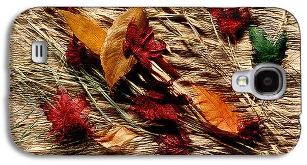 Fall Foliage Still Life Galaxy S4 Case