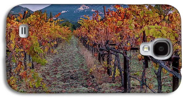 Fall In Wine Country Galaxy S4 Case