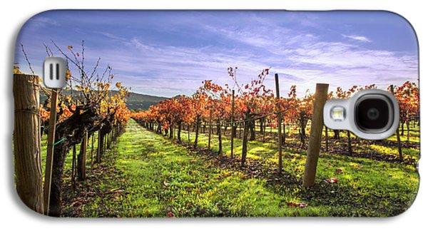 Fall Leaves At The Vineyard Galaxy S4 Case by Jon Neidert