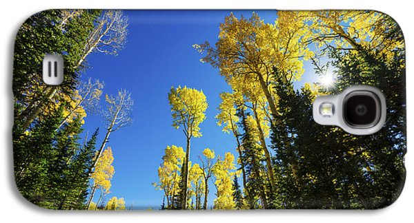 Fall Light Galaxy S4 Case by Chad Dutson