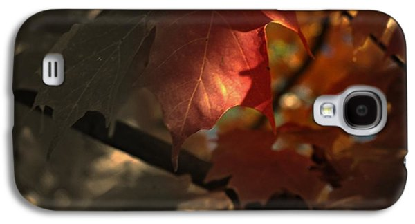 Fall Or Not Galaxy S4 Case