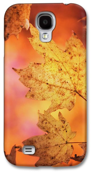 Fall Reveries Galaxy S4 Case