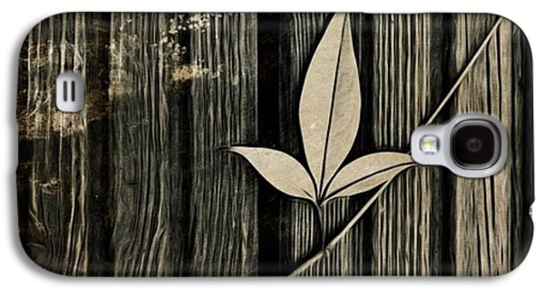 Galaxy S4 Case - Fallen Leaf by John Edwards
