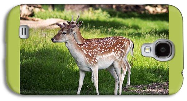 Fallow Deer In Richmond Park Galaxy S4 Case by Rona Black