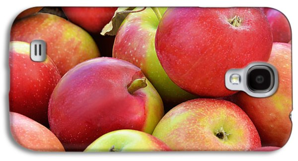 Farmstand  Fresh-picked  Apples Galaxy S4 Case by Regina Geoghan