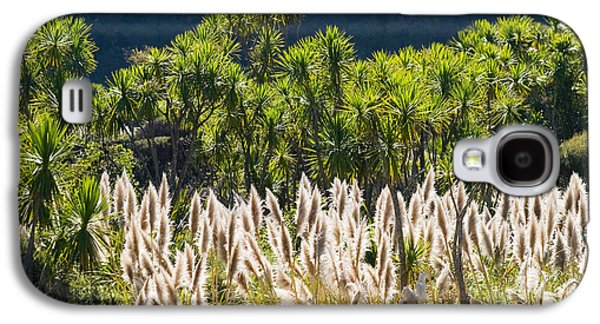 Feathery White Plants Galaxy S4 Case by Tomas del Amo - Printscapes