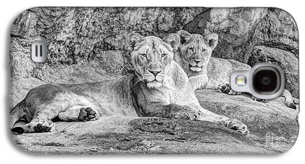 Female Lion And Cub Bw Galaxy S4 Case