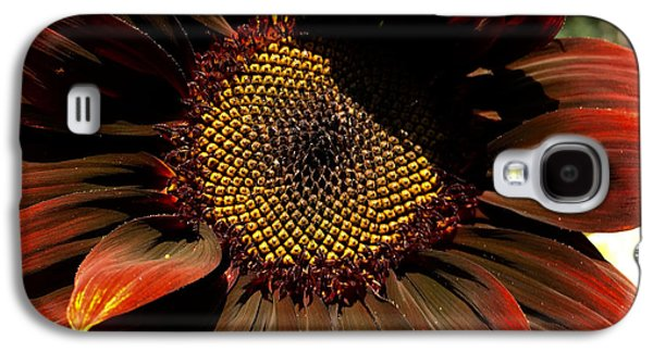 Fibonacci Hues Galaxy S4 Case