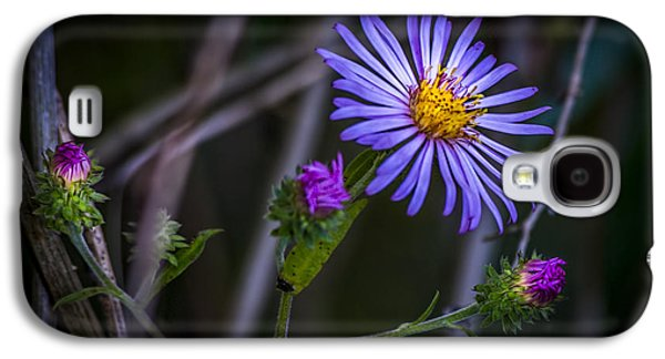 Field  Beauty Galaxy S4 Case by Marvin Spates