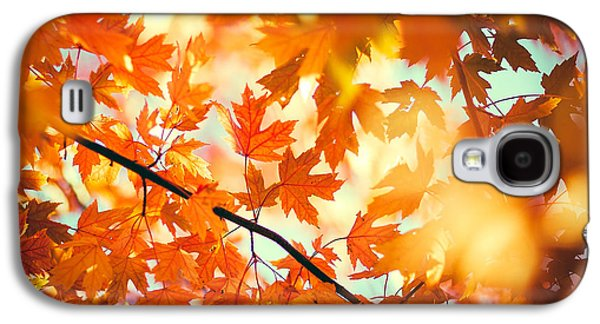 Field Of Orange Galaxy S4 Case by Todd Klassy