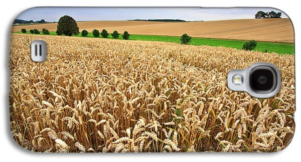 Field Of Wheat Galaxy S4 Case