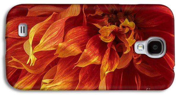 Fiery Dahlia Galaxy S4 Case