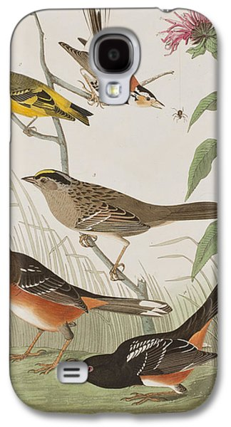 Finches Galaxy S4 Case by John James Audubon