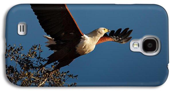 Fish Eagle Taking Flight Galaxy S4 Case by Johan Swanepoel