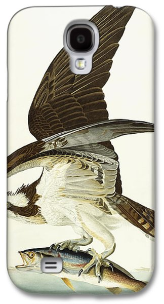 Fish Hawk Galaxy S4 Case by John James Audubon