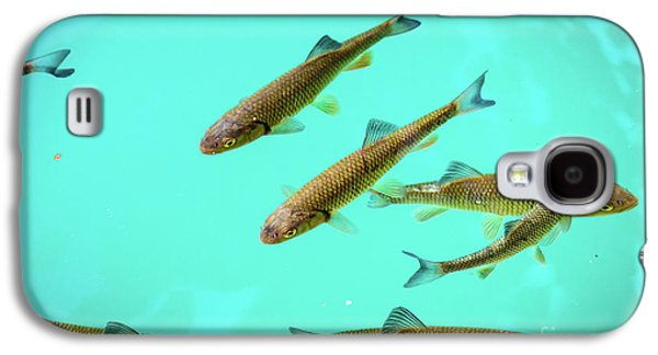 Fish School In Turquoise Lake - Plitvice Lakes National Park, Croatia Galaxy S4 Case