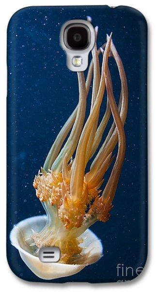 Flame Jelly Galaxy S4 Case by Jason O Watson