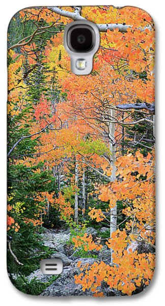 Galaxy S4 Case featuring the photograph Flaming Forest by David Chandler
