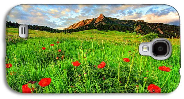 Flatiron Poppies Galaxy S4 Case by Scott Mahon