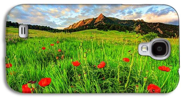 Flatiron Poppies Galaxy S4 Case by Scott Mahon