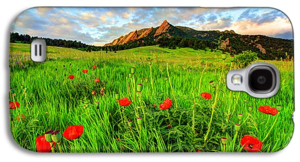 Flatiron Poppies Galaxy S4 Case