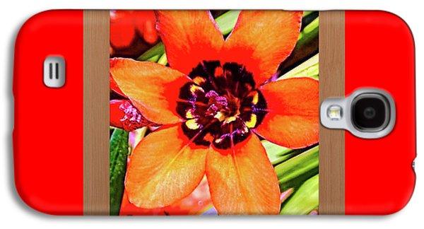 Fleur D'oranger Galaxy S4 Case by Shirley Anderson