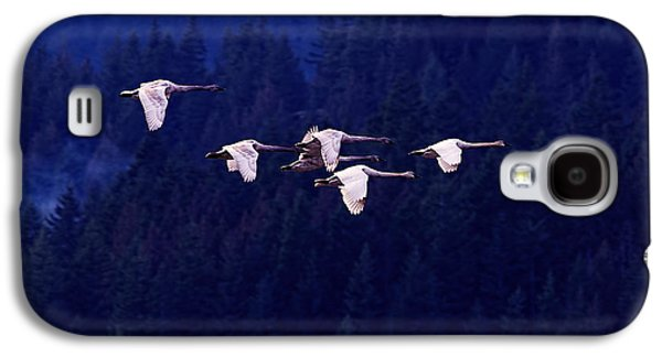 Swan Galaxy S4 Case - Flight Of The Swans by Sharon Talson