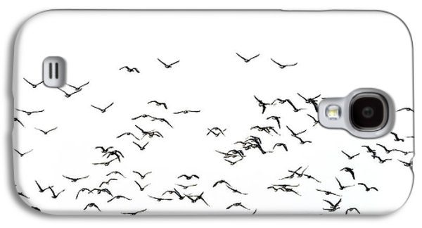 Flock Of Beautiful Migratory Lapwing Birds In Clear Winter Sky I Galaxy S4 Case