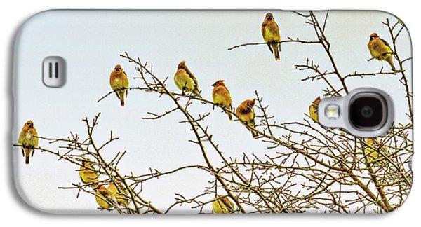Flock Of Cedar Waxwings  Galaxy S4 Case by Geraldine Scull