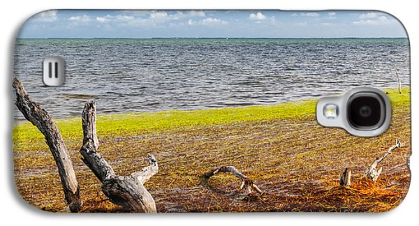 Florida Keys Colors Galaxy S4 Case by Elena Elisseeva