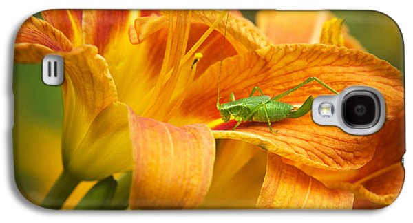 Flower With Company Galaxy S4 Case by Christina Rollo
