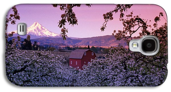 Flowering Apple Trees, Distant Barn Galaxy S4 Case