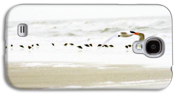 Tern In Flight Galaxy S4 Case