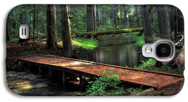 Forest Foot Bridge Galaxy S4 Case