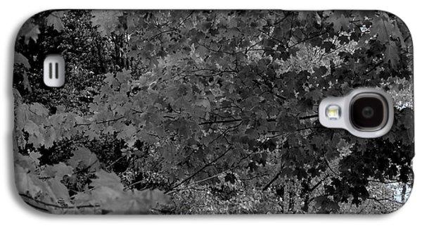 Forest Hut Galaxy S4 Case