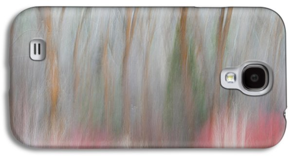Forest Impression 1 Galaxy S4 Case