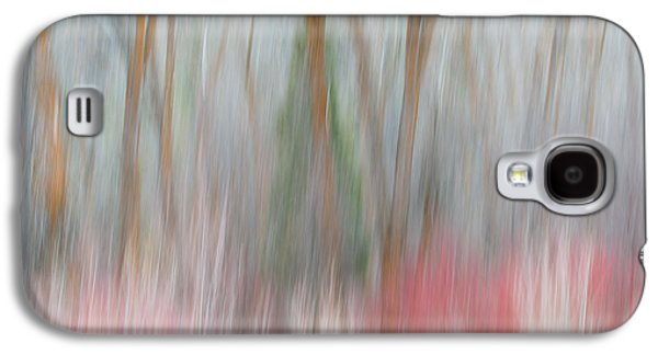 Forest Impression 3 Galaxy S4 Case by Leland D Howard
