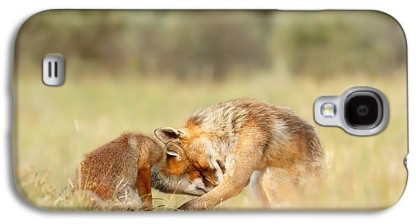 Foreverandeverandever - Red Fox Love Galaxy S4 Case by Roeselien Raimond